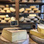 Różnorodne gatunki sera